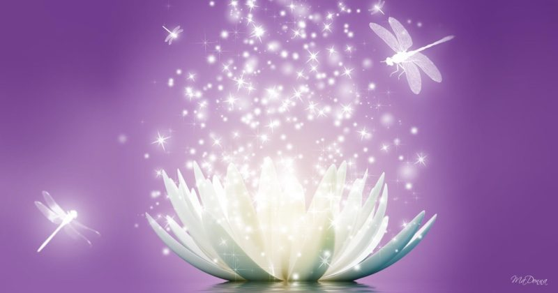 "July 21-22, 2018 ""I AM Activating My Crystalline Lightbody"" class in Madison, WI"